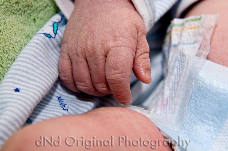 28 Declan 1 day Old (hand).jpg