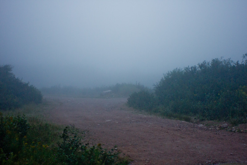 Fog in Nova Scotia