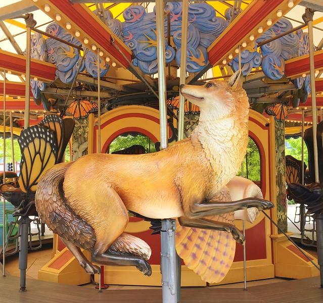 Carousel Fox.JPG