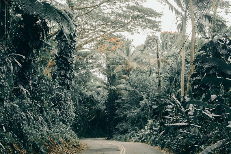 Hawaii20-377.jpg