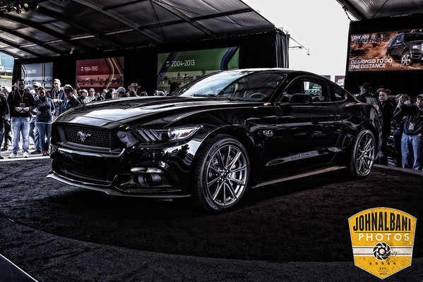 Mustang 50th