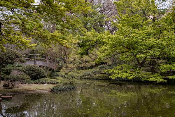 Japanese Garden, Early Spring 2018