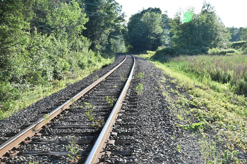 2019_06_26 CS Trail (82).JPG