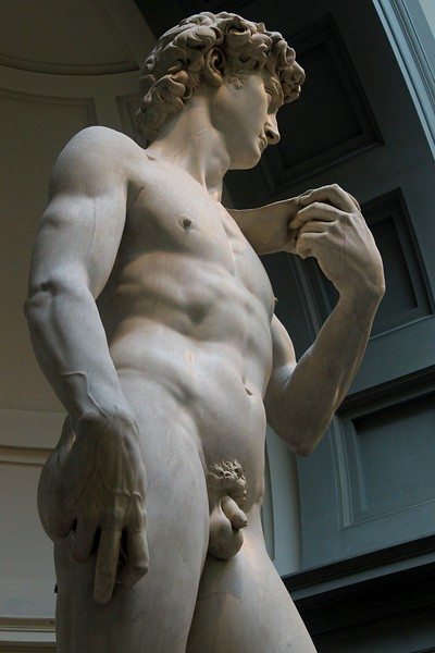 Michaelangelo completed the David in less than 3 years, working day and night, sleeping in the workshop and skipping many meals.