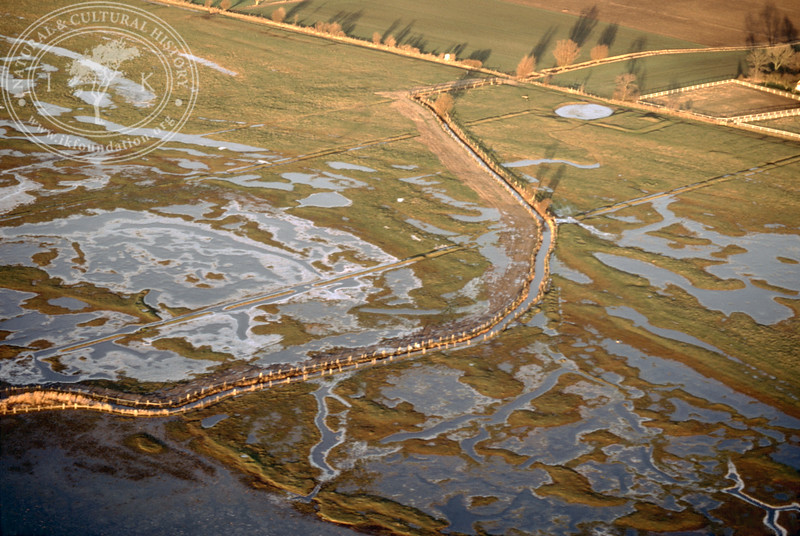 Salt marsh landscape in the southern part of the Öresund, between Hammarsnäs to Tygelsjö meadows in Southwest Skåne (12 December, 1987). | LH.0155