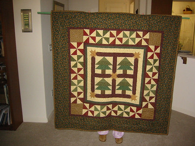 Joy's Quilt Pictures