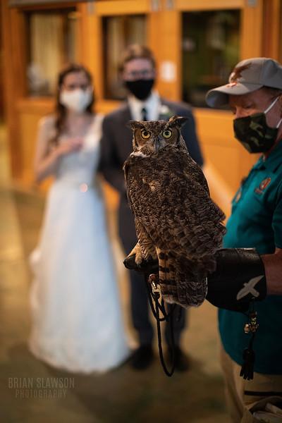 Schlitz_Audubon_Nature_Center_Wedding__72.jpg