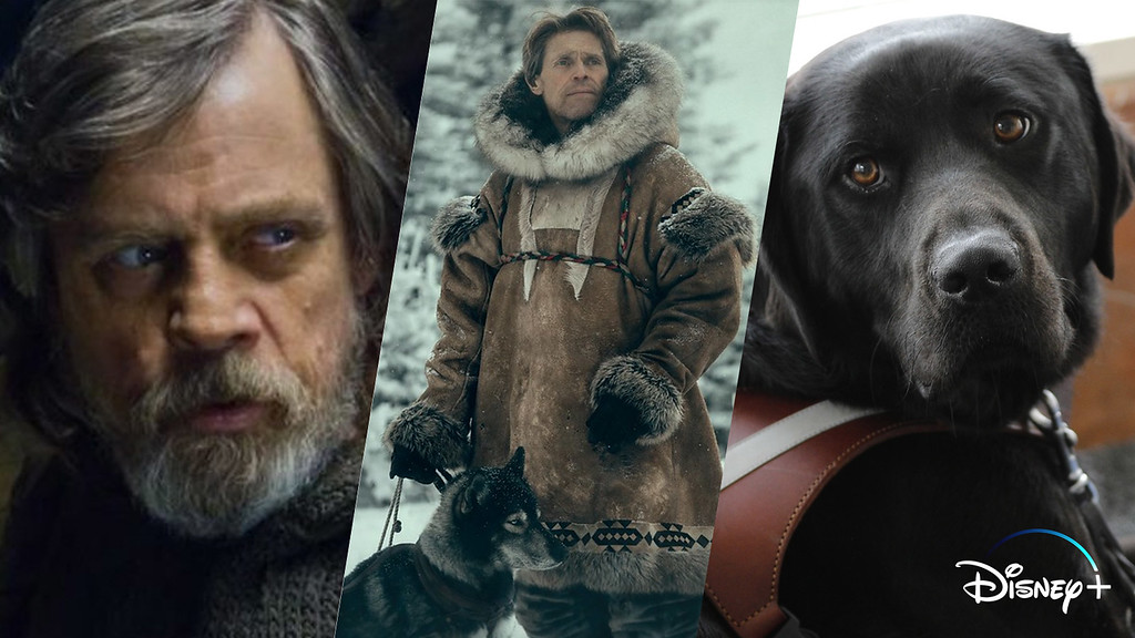 WHAT'S NEW (12/16 – 12/29) – LAST JEDI, TOGO, PICK OF THE LITTER, and more on #DisneyPlus