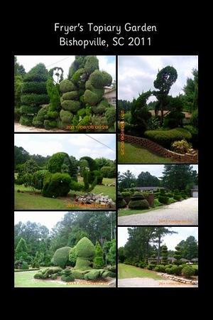 SC, Bishopville - The Pearl Fryar Topiary Garden
