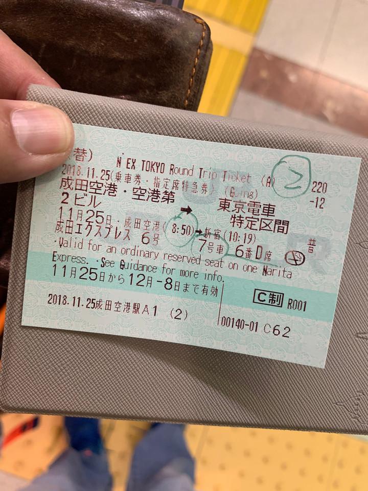 NEX from Narita to Shinjuku