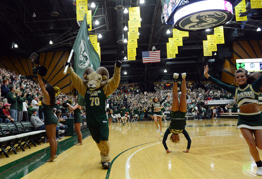 . Fort COLLINS, CO. - FEBRUARY 23: The Colorado State Rams mascot and cheerleaders prepare for the start of the mens basketball team at Moby Arena in Fort Collin, CO February  24, 2013. The Colorado State Rams mens basketball team lost to the New Mexico Lobos, 82-91. (Photo By Craig F. Walker/The Denver Post)