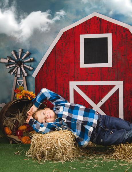 Braxton Harvest Mini