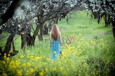Wild Flowers  2015 OS