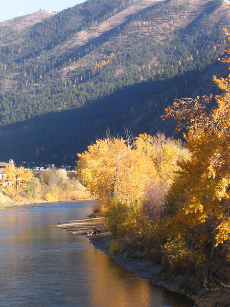 """Looking up Hellgate Cayon along the Clark Fork River. This is the """"river that runs through"""" from Norman Maclean's book. The orange trees on the hill side are Tamaracks which are Larch pines that loose their needles in the fall. Montana is the only place I've seen them but they are common in Canada and the northeast."""