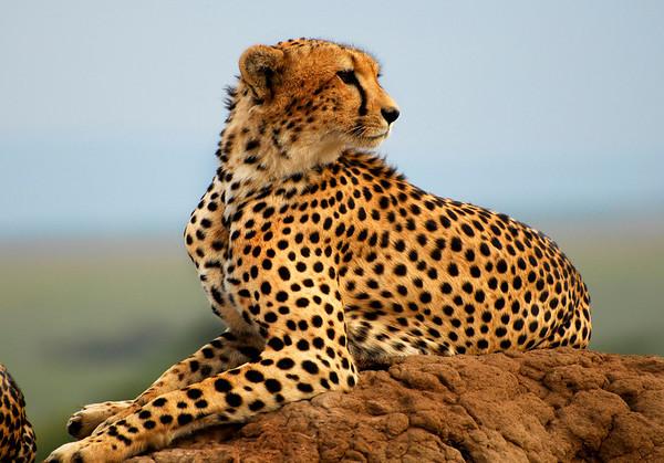 KENYA: Photographer May Uyehara