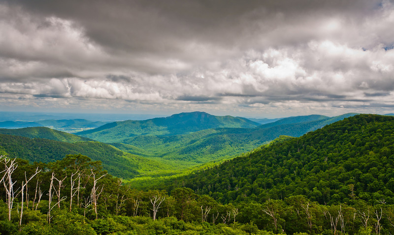 View of the Appalachians from Pinnacles Overlook, Skyline Drive, Shenandoah National  Park, Virginia.
