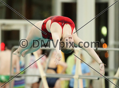 Herndon Swim and Dive (01 Dec 2017)