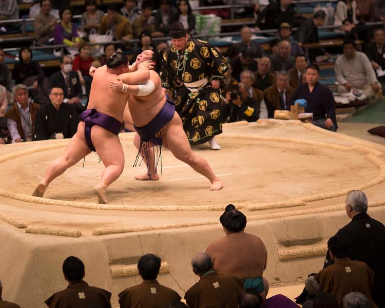 Osaka Sumo 220313 48 .jpg