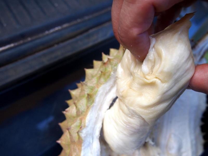 Maui-Durian.jpg