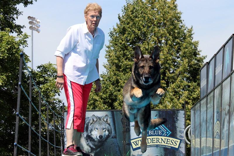 2015.8.6 Winnebago County Fair Dock Dogs (14).JPG