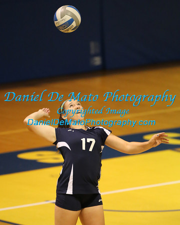 2013 College Volleyball