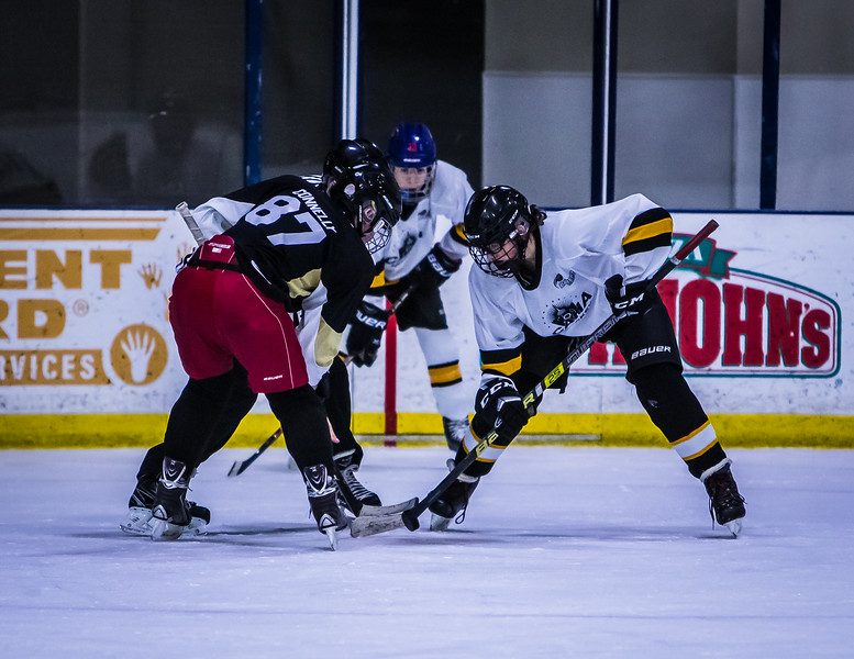 Bruins-138.jpg