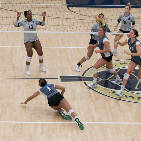 HPU Volleyball-92713.jpg