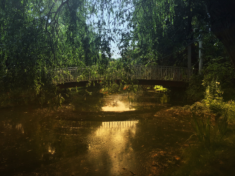 Jarden l'Arborium.jpg