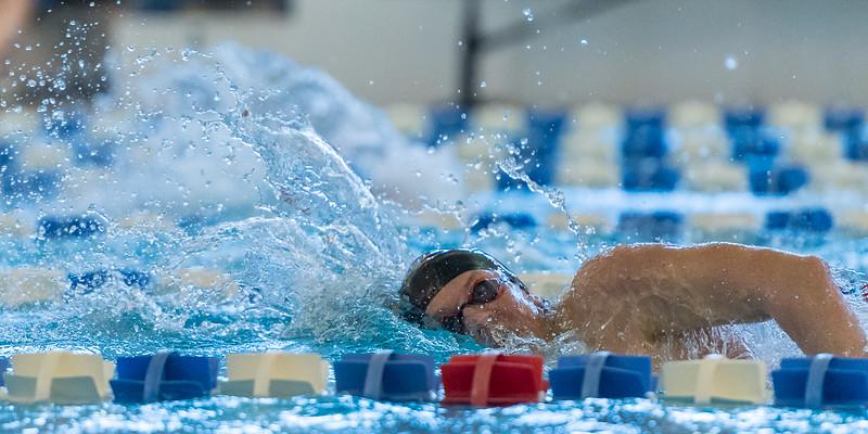 2018_KSMetz_Feb17_SHS Swimming_ State Finals_NIKON D5_5160.jpg