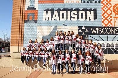 Metro Lynx Women's Hockey