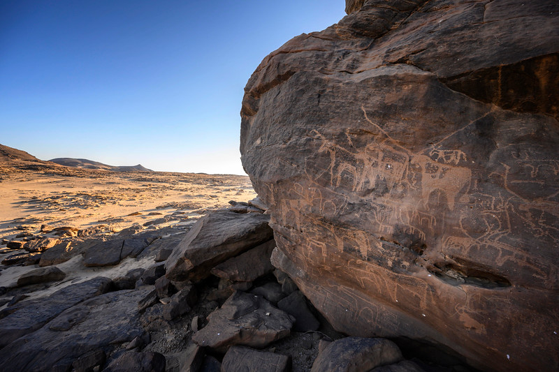 Rock art at Sabu depicting a combination of cattle and wild game animals.