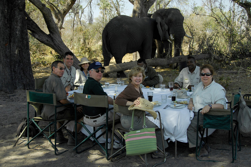 EPV0578 Lunch with the Elephants.jpg