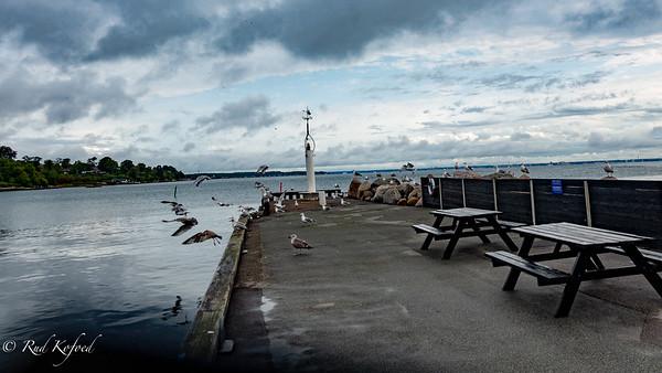 Sletten Havn 2018