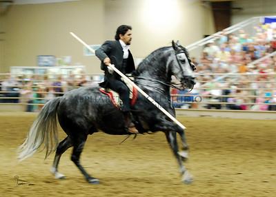Ballet on Horseback, 2007