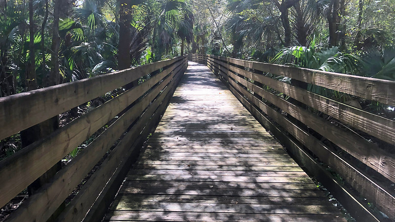 Long straight boardwalk