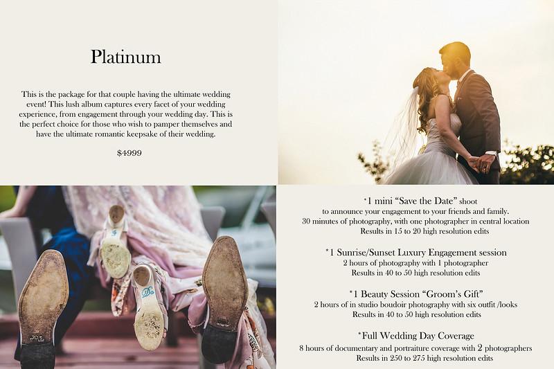 Platinum Pricing.jpg