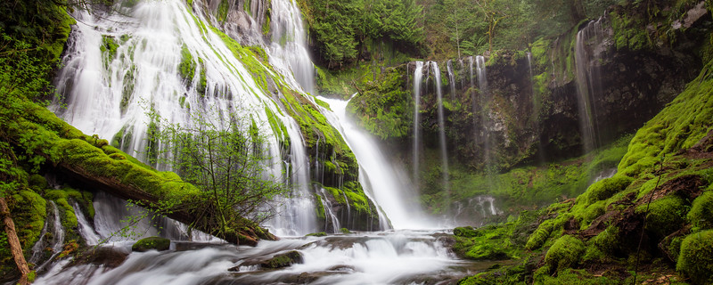 Panther Creek Falls April 2016-33.jpg