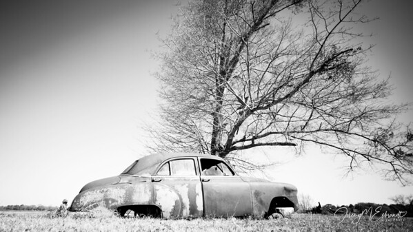 The Sugar Shack - Old Car Edition - 02-28-2016