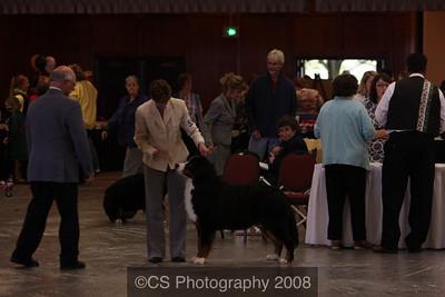 Puppy Dog 9-12 mos-BMDCA 2009