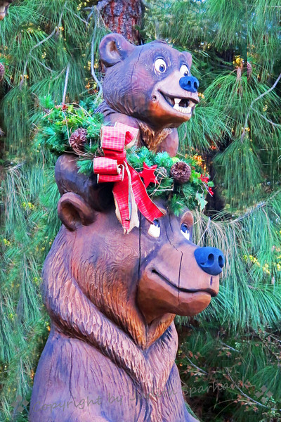 A Beary Merry Christmas ~ These bears were decorated for Christmas in the Redwood Creek section of California Adventure Park at Disneyland.