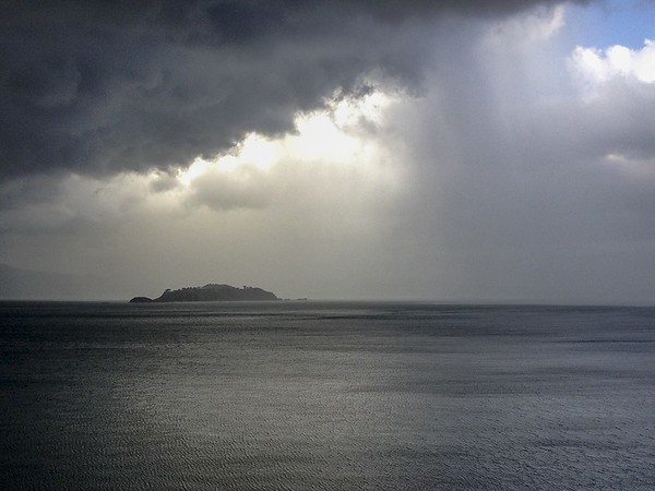 20140325 Somes Island, Wellington Harbour - iPhone a