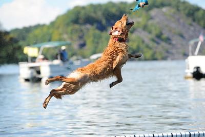 RCHS Bomoseen Dock Diving Dogs Fundraiser 2018