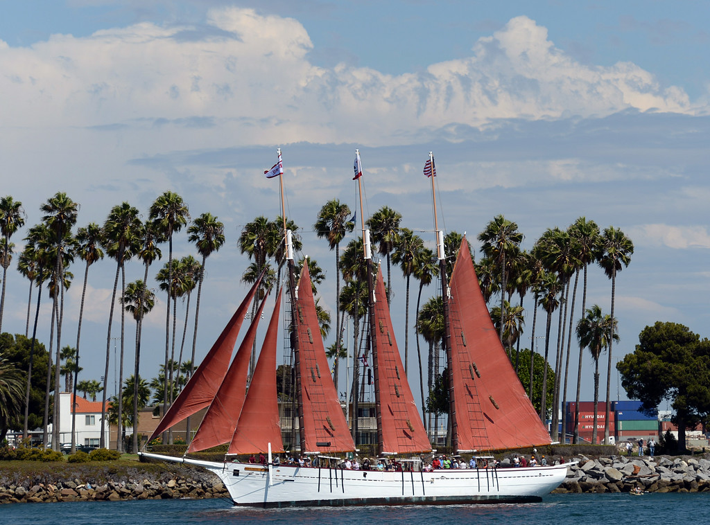. Tall ships make their way up the Main Channel, past a large crowd at Warehouse 1, in the Port of Los Angeles for the Grand Parade of Sail Wednesday, August 20, 2014, San Pedro, CA.   Photo by Steve McCrank/Daily Breeze