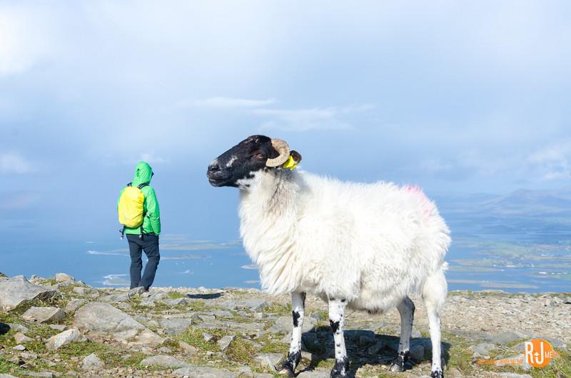 Croagh Patrick, Ireland