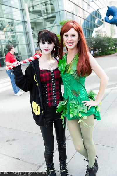 Denver Comic Con 2014 - Sunday