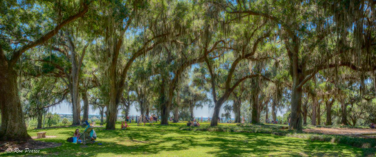 Bok Tower  -  Lake Wales, Florida