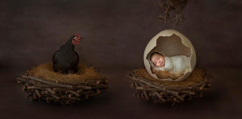 Caroline_Bowen_newborn_winner_03.jpg