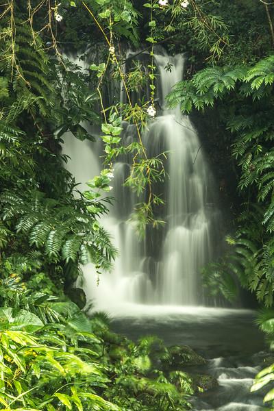Falls at Akaka