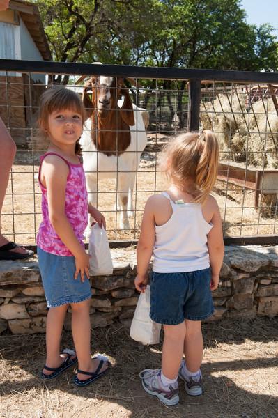 Austin_Zoo-5353.jpg