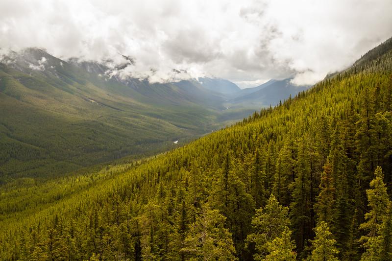 Genevieve Hathaway_Alberta_Banff National Park.jpg